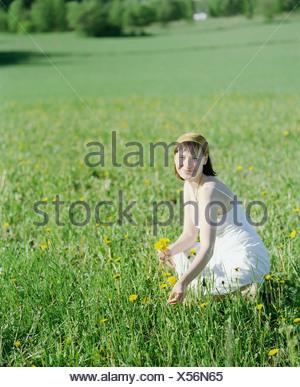 Junge Frau, die Blumen zu pflücken, in einem Feld - Stockfoto