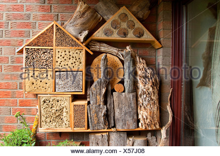 nist und winterschlaf insektenhaus an wand marienk fer florfliegen bienen und andere insekten. Black Bedroom Furniture Sets. Home Design Ideas