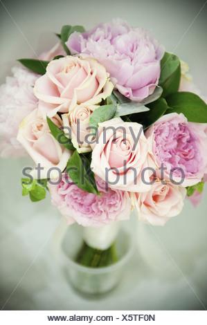 rosen mit kleinen bl ten stockfoto bild 18407789 alamy. Black Bedroom Furniture Sets. Home Design Ideas