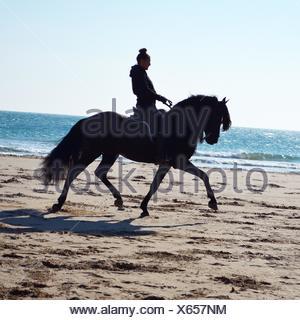 Frau reitet auf dem Pferd am Strand - Stockfoto