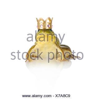 Gr ner frosch mit einer goldenen krone christbaumschmuck stockfoto bild 127149777 alamy - Frosch auf englisch ...