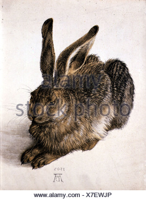 "Bildende Kunst, Dürer, Albrecht (1471-1528), ""Feldhase"" (Young Hare), Aquarell, 1502, Albertina, Wien, Österreich, Zoologie, Hase - Stockfoto"