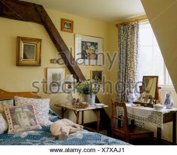 Perfekt Hund Schläft Auf Bett Mit Kissen Und Blaue Abdeckung Im Ferienhaus  Schlafzimmer Mit Holzwand Strahl Und