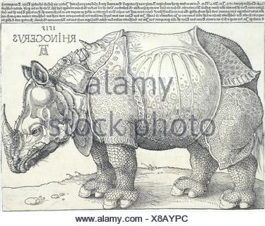 Das Nashorn. Künstler: Albrecht Dürer (Deutsch, Nürnberg 1471-1528 Nürnberg); Datum: 1515; Medium: Holzschnitt; Abmessungen: Bild: 8 3/8 x 11 5/8 in. - Stockfoto