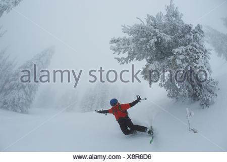 Ein jugendlich Junge fällt beim Skifahren in nebligen, whiteout Bedingungen in der Nähe von Rauhreif bedeckt Koniferen. - Stockfoto