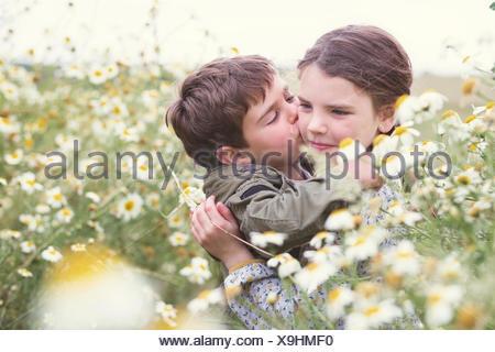 Junge küssen eines Mädchens Wange im Bereich der Gänseblümchen, Andalusien, Spanien Stockfoto