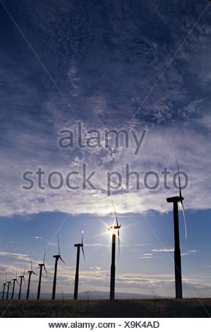 Windmühlen zur Stromerzeugung - Stockfoto