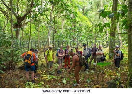 Molokai, lokale, Polynesian, keine Modellfreigabe, Mann, guide, Besucher, USA, Hawaii, Amerika, Regenwald,