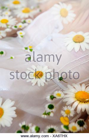 Frau im Wasser mit Gänseblümchen auf schwimmende Stockfoto