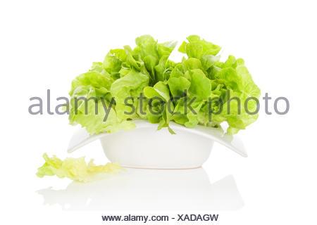 Frischer grüner Salat in Schüssel weiß isoliert auf weißem Hintergrund. Frische gesunde Sommer essen. Kochkunst.