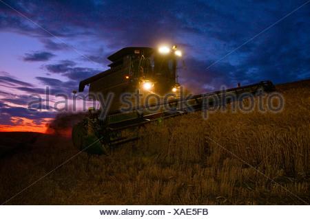 Landwirtschaft - John Deere Mähdrescher erntet Weizen in der Abenddämmerung in der Palouse Region / in der Nähe von Pullman, Washington, USA. - Stockfoto