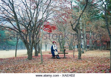Junge Frau sitzt auf der Bank im Park im Herbst Stockfoto