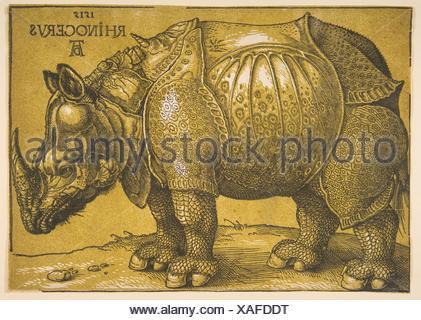 Das Nashorn. Künstler: Albrecht Dürer (Deutsch, Nürnberg 1471-1528 Nürnberg); Termin: n.d; Medium: Holzschnitt; Abmessungen: Blatt: 8 7/16 x11 13/16-in. - Stockfoto