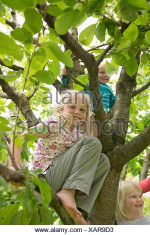 Drei kleine Kinder im Garten sitzen in Kirschbaum