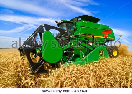 Landwirtschaft - Nahaufnahme von einem John Deere Mähdrescher beim Ernten von Weizen in der Palouse Region / in der Nähe von Pullman, Washington, USA. - Stockfoto
