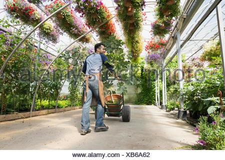Arbeiter, die Pflanze Gärtnerei Gewächshaus Sackkarre einschieben - Stockfoto