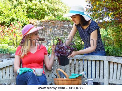 Junge Frau sitzt auf der Bank, Freund zeigen, Pflanze Stockfoto