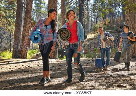 Vier junge Erwachsene Freunde, die zu Fuß in Wald mit Campingausrüstung, Los Angeles, Kalifornien, USA - Stockfoto