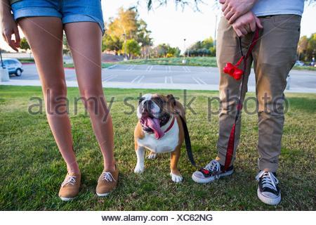 Porträt der Bulldogge im Park zwischen den Beinen des jungen Paares - Stockfoto