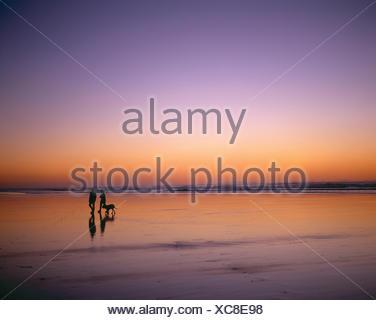 Neuseeland. North Island. Region Auckland. Paar Spaziergang mit dem Hund zusammen Piha Beach in der Abenddämmerung. - Stockfoto