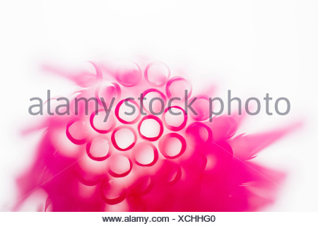 Studioaufnahme von rosa Trinkhalme - Stockfoto