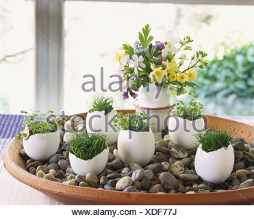 oster deko eierschalen gef llt mit kr utern und blumen stockfoto bild 25297719 alamy. Black Bedroom Furniture Sets. Home Design Ideas
