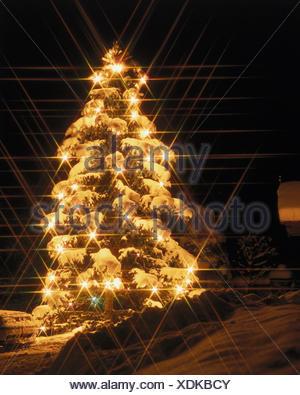illuminateded weihnachtsbaum drau en in der nacht stern. Black Bedroom Furniture Sets. Home Design Ideas