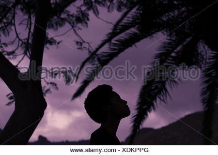 Silhouette der Frauenkopf in der Natur - Stockfoto