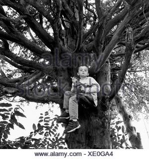 Ein Junge sitzt auf einem Baum mit einer Spielzeugpistole - Stockfoto