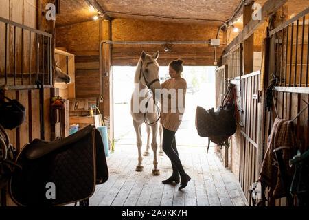 Joven mujer activa en sport poniendo bridas sobre blanco caballo de carreras Foto de stock