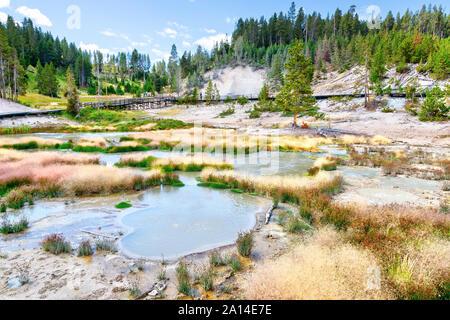 Volcán de Lodo en el Parque Nacional de Yellowstone, donde penetrante olor a azufre insinuar la hirviente barro, actividades hidrotermales en la zona.