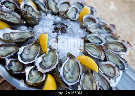 Las ostras de limón y hielo en una placa en un restaurante francés