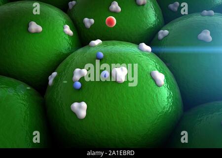 La proteína de la superficie celular, receptores y la vena en la superficie de las células