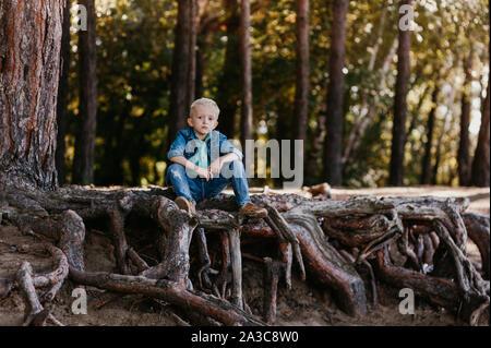 Retrato de un pequeño y lindo niño de 3 años al aire libre en el parque de otoño