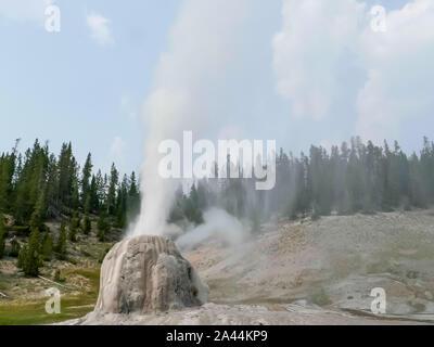 Lone Star geyser en erupción en Yellowstone Park Foto de stock