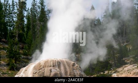 Un primerísimo plano de Lone Star geyser en erupción en Yellowstone Foto de stock
