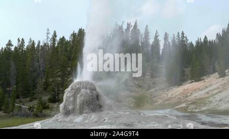 Lone Star geyser en erupción en Yellowstone National Park Foto de stock
