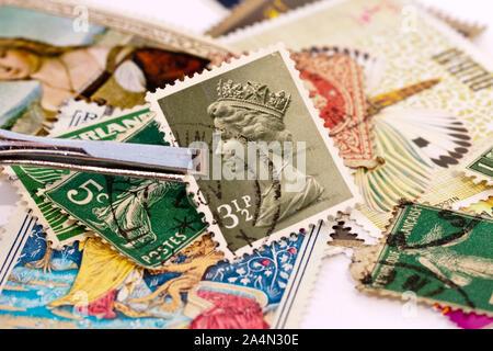 Pinzas sujetando una estampilla del Reino Unido con el Queen Elizabeth 2 cara vertical. Colecciones de sellos en el fondo.