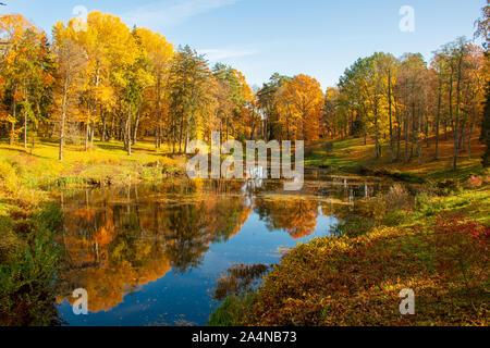 Maravilloso Paisaje otoñal con bellos árboles de color amarillo y naranja, lago o río, vertical