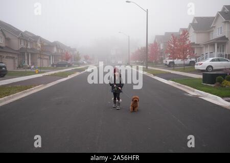 Chica paseando a un perro en medio de misty suburban road, retrato de longitud completa