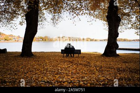 Pareja sentada en un banco rodeado de hojas caer disfrute de paisajes Foto de stock