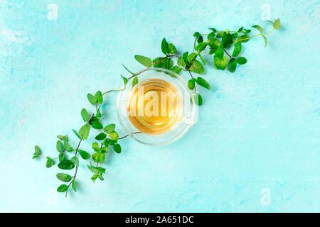 Taza de té de menta, tomada desde la parte superior sobre un fondo azul con vibrantes hojas de menta fresca y un lugar para el texto