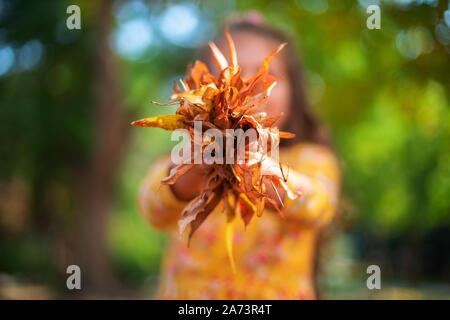 Poco sonriente niña jugando con las hojas de otoño en un parque del sol