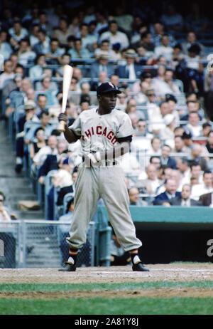 BRONX, NY - 19 DE JUNIO: Minnie Minoso #9 de los Chicago White Sox ajusta su correa mientras al bate durante un juego MLB contra los Yankees de Nueva York el 19 de junio de 1955, en el Yankee Stadium en el Bronx, Nueva York. (Foto por Hy: SetNumber Peskin) (X2762) *** Local Caption *** Minnie Minoso