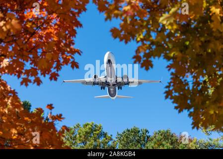 Delta Air Lines jet (Boeing 737-900) Sobrecarga, visto a través de vívidas hojas de otoño sobre el enfoque del avión al aeropuerto internacional de Atlanta. (Ee.Uu.)