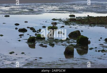 La marea baja en la ZPE de Sandymount Strand playa, Dublín, Irlanda. Luz del atardecer, en el agua de piscinas. Marea del Mar de Irlanda fuera Foto de stock
