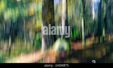 Los árboles en los bosques.la naturaleza abstracta intencional creado utilizando la técnica de movimiento de la cámara.el desenfoque de movimiento.Fine Art imagen ICM perfecto para imprimir, papel tapiz.