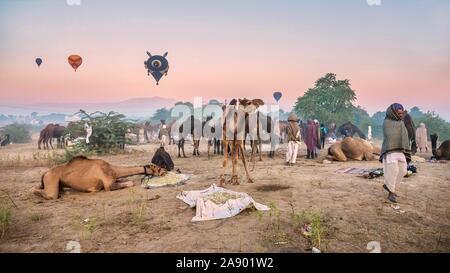 La Feria de camellos de Pushkar es un evento anual en Rajastán, donde los camellos son compradas y vendidas, y globos aerostáticos flotan en el cielo al amanecer.