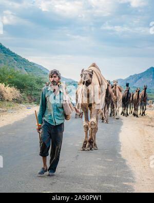 Los comerciantes de camellos regresan del bosque del desierto con su caravana a la feria anual de camellos en Pushkar, Rajasthan.