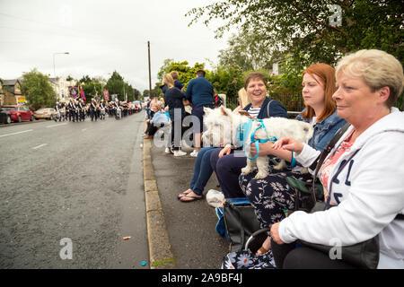 12.07.2019, Belfast, Irlanda del Norte, Reino Unido - Los espectadores en Orangemens día, protestante, políticamente cargado y vacaciones anuales commemorati Foto de stock